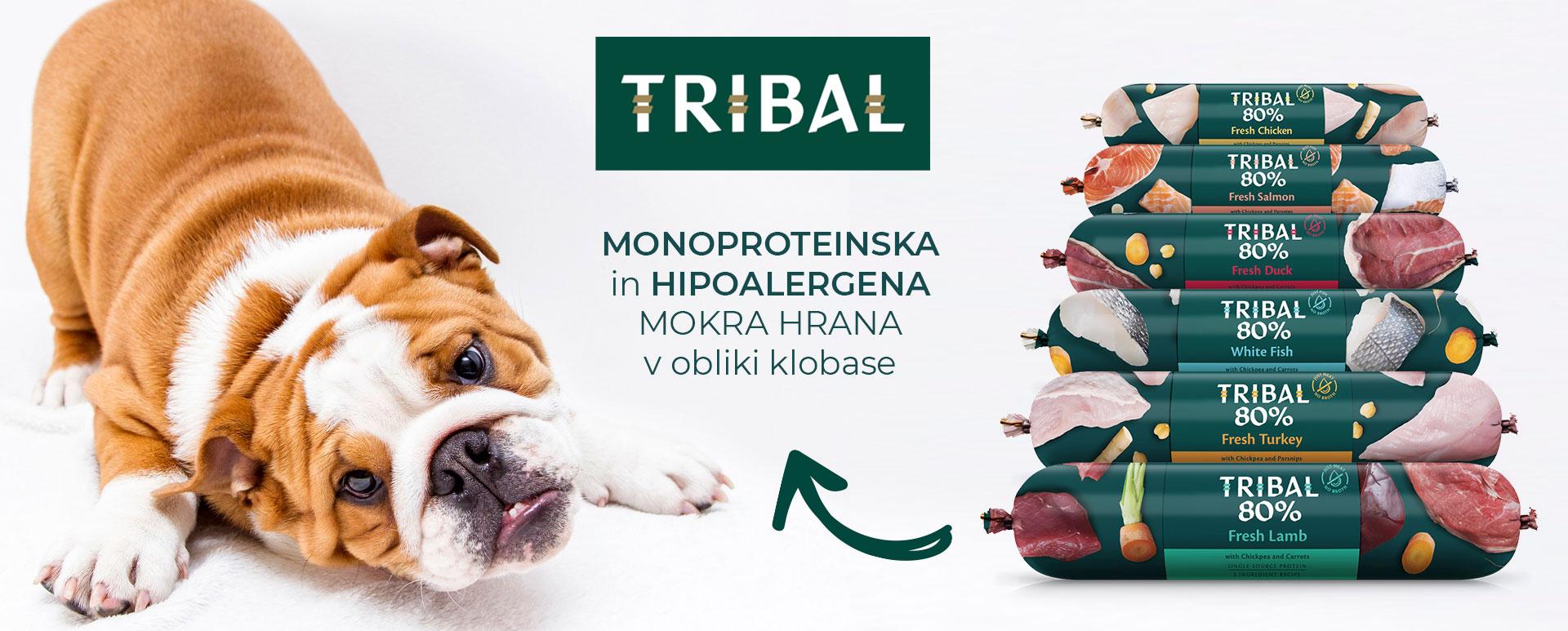 Tribal priboljški