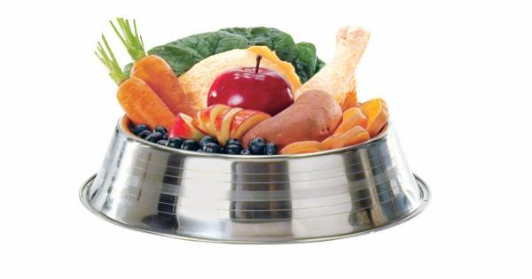 Zakaj naravna prehrana psov?