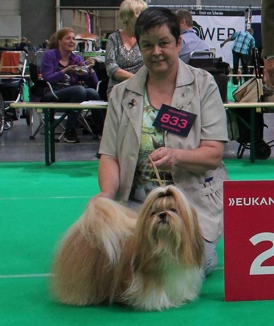Pogovor s Carolo Vorderstemann: Shih-Tzu je perfekten družinski kuža
