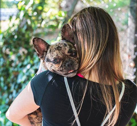 Loving Paw kuža meseca maja: Edinstvena Zoe