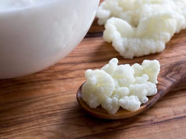 Kefir: Vsestransko živilo za kužka in muco