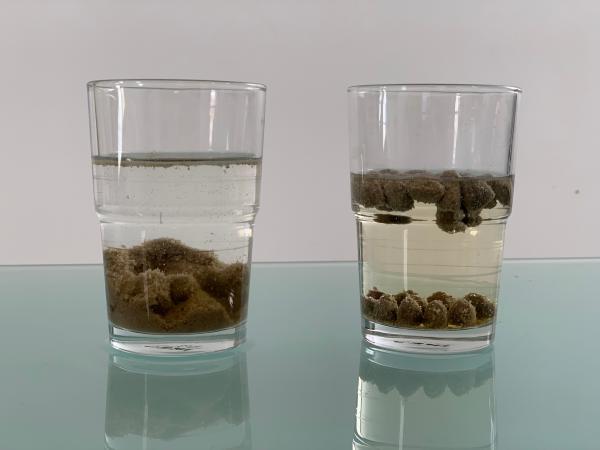 Preprost test: Razlika med peleti in briketi