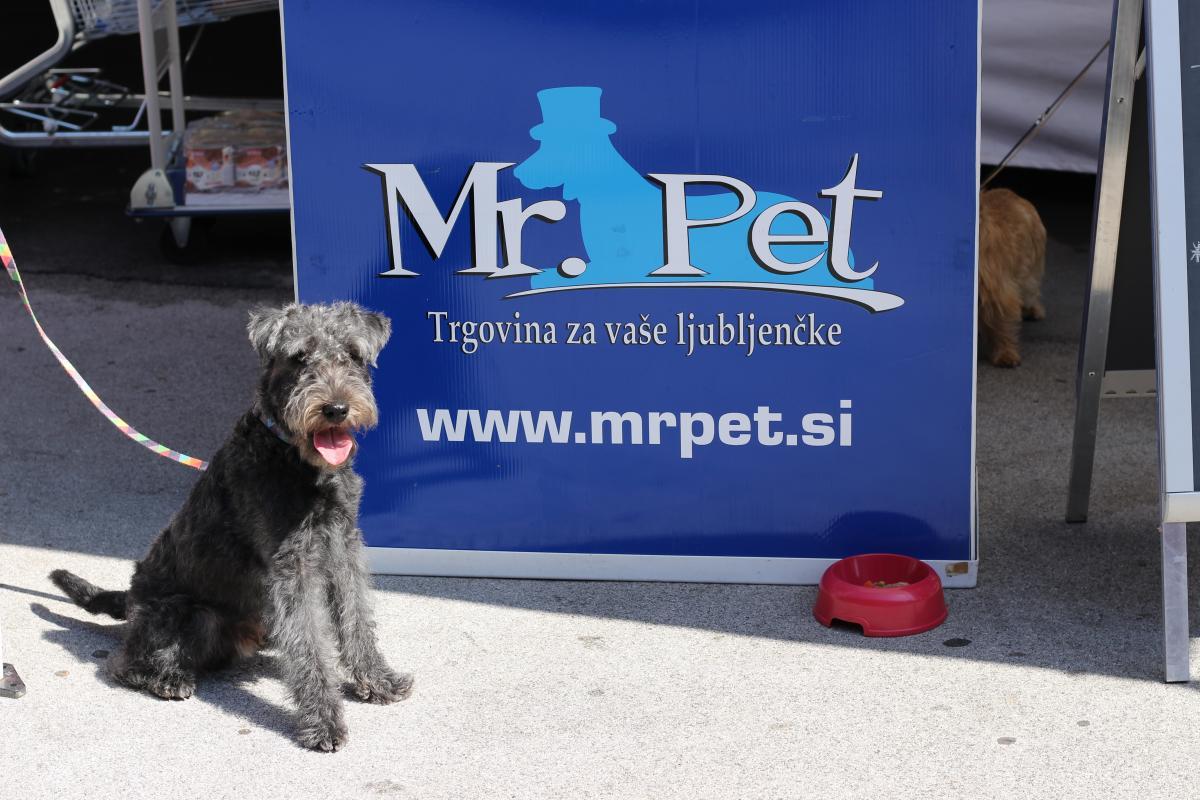 Otvoritev nove trgoine Mr. Pet v Velenju