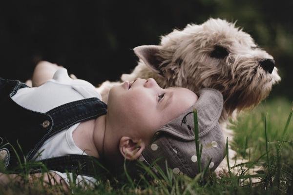Sobivanje otroka in kužka: osnovna pravila