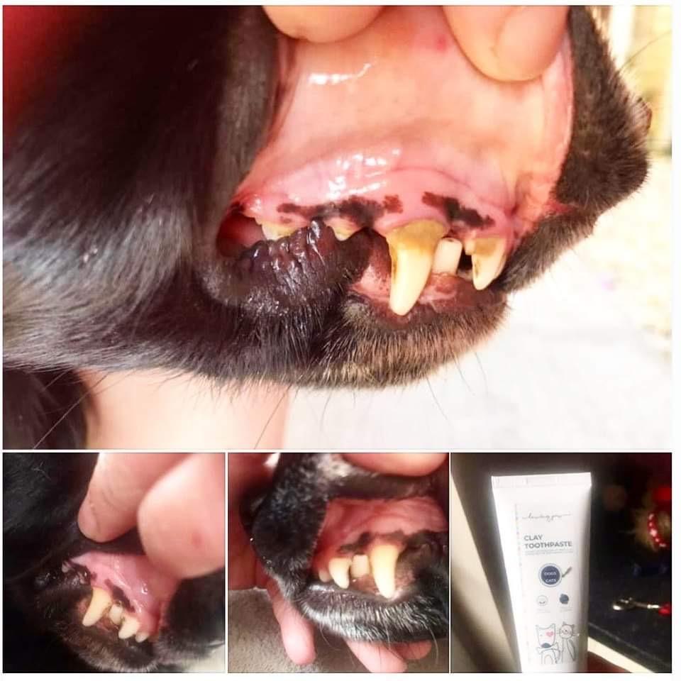 Uporaba glinene zobne kreme