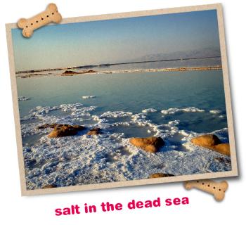 Minerali mrtvega morja