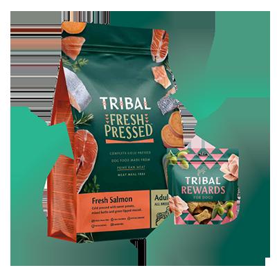 Tribal reciklirana embalaža